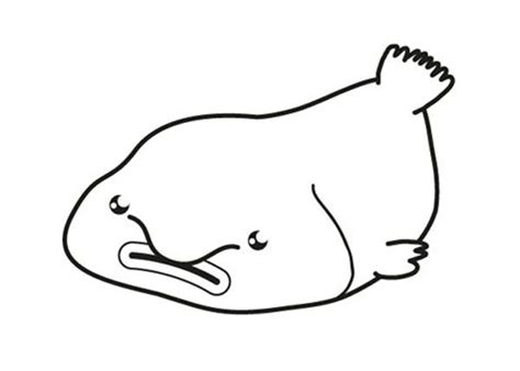 blob fish coloring page blobfish colouring pages page 2 sketch coloring page
