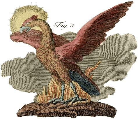 public domain phoenix image rare  graphics fairy