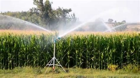 irrigated corn ducar jet35 corn irrigation 2 youtube