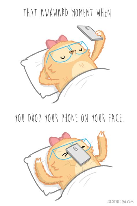 Meme Phone Falling On Face - slothilda gif find share on giphy