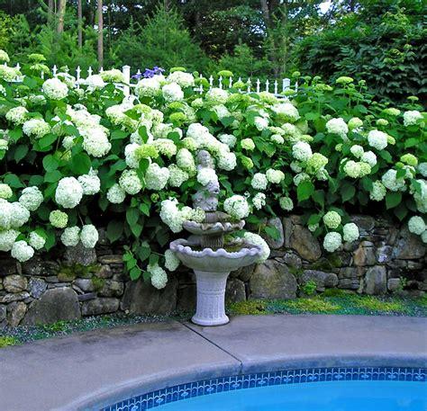 garden designs by kristen
