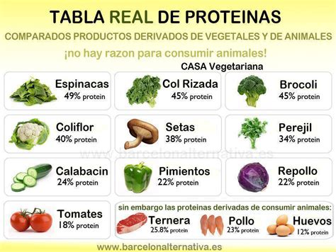 listado proteinas prote 237 nas vegetales movimiento antiespecista