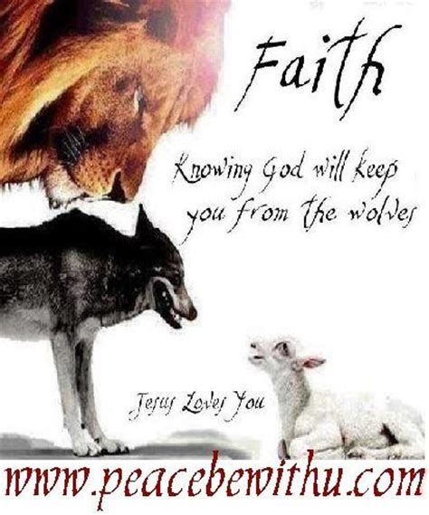 he was a wolf in sheep s clothing 2 volume 2 books thank you jesus you from and sheep on
