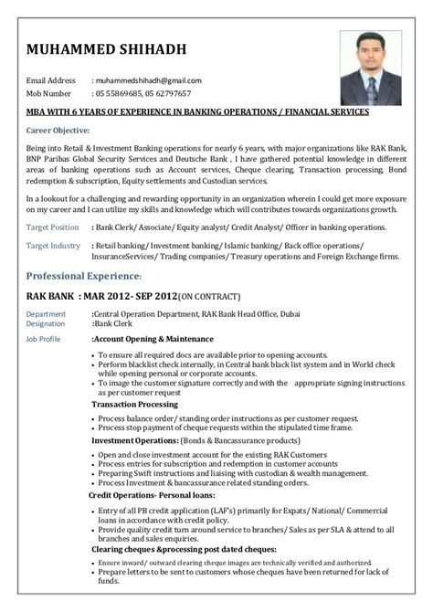 resume format for banking professional resume sle world bank resume ixiplay free resume sles