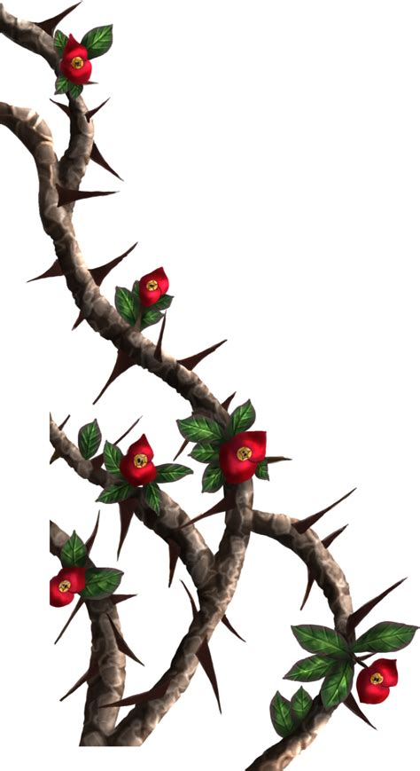 rose and thorn vine tattoos vines crown of thorns painted by dameodessastock