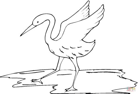 coloring pages of lady bird lady bird free colouring pages