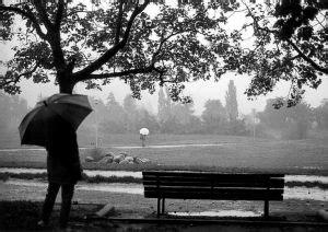 Aku Kamu Dan Hujan miladiyah aku kamu dan hujan pada desember