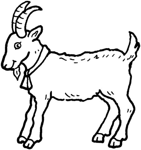 Billy Goat Coloring Page | billy goat coloring page supercoloring com