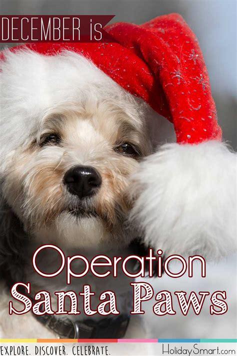 operation santa paws holiday smart