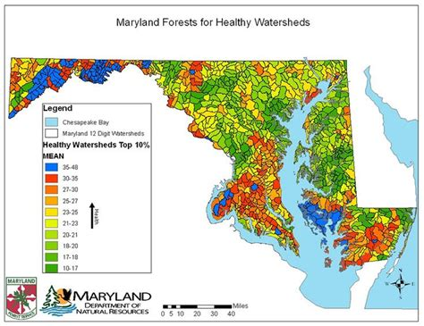 maryland forest map 732 best images about maps and charts on