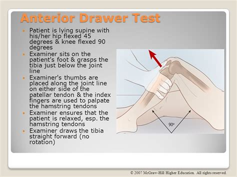 Drawer Test For Knee by Chapter 16 The Knee And Related Structures Ppt