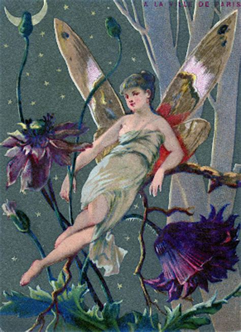 vintage graphic fairy  moonlight  graphics fairy