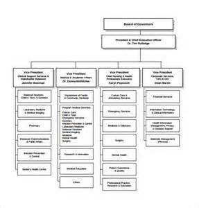 sample hospital organizational chart 8 documents in pdf