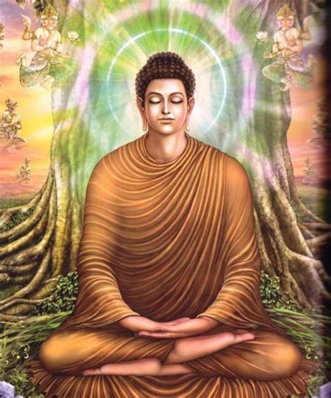 beverly buddha the true story of an enlightened rogue books visions december 2013