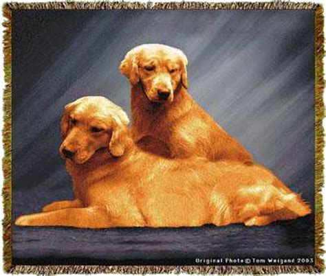 golden retriever blanket golden retriever blanket tapestry throw afghan at anwo animal world 174