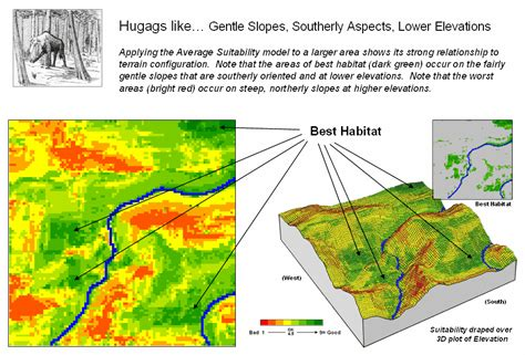 terrain and landscape study for suitability mapping