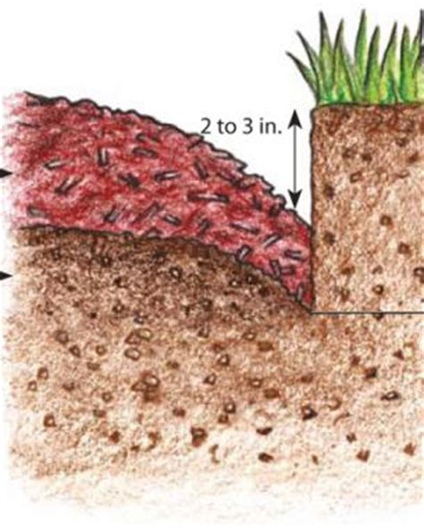 perfect edges for your beds and borders fine gardening