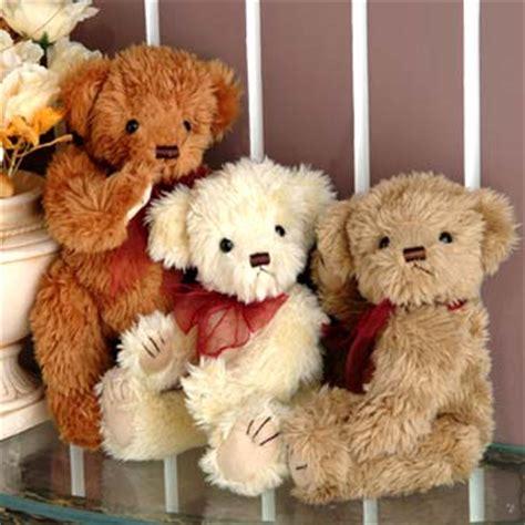 beruang dengan koleksi gambarnya yang lucu gambar hidup