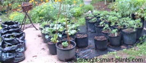 garden smart container gardening garden on vertical vegetable gardens vertical