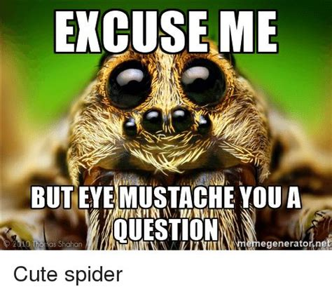 Sad Spider Meme - 32 best kawaii spiders images on pinterest hand