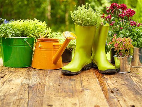 Flower Gardening For Beginners Flower Gardening Tips For Beginners Boldsky