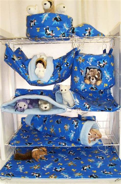 ferret bedding 475 best images about crazy rat lady on pinterest guinea pigs chinchilla cage