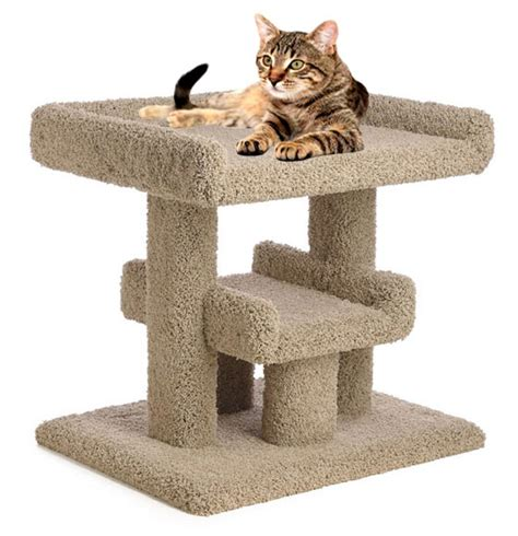 cat furniture cat furniture for large cats 28 images through golden