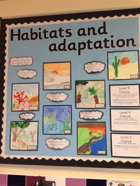 ideas for ks2 science club 28 best science fair images on pinterest school projects