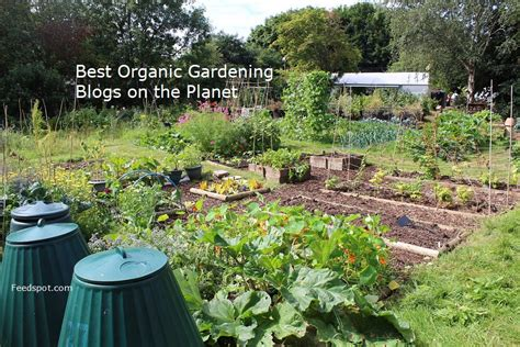 top 30 organic gardening blogs and websites for organic