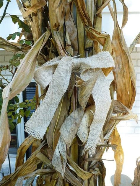 Fall Decorations With Corn Stalks by 17 Best Images About Quot Indian Corn Quot On Pumpkins