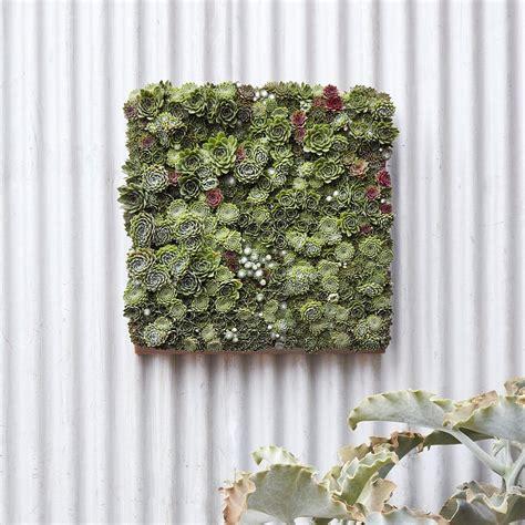 Vertical Goodness 10 Diy Living Walls Kits For Green Living Wall Garden Kit