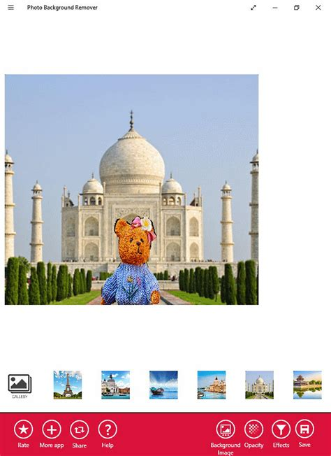 photo background remover software  windows