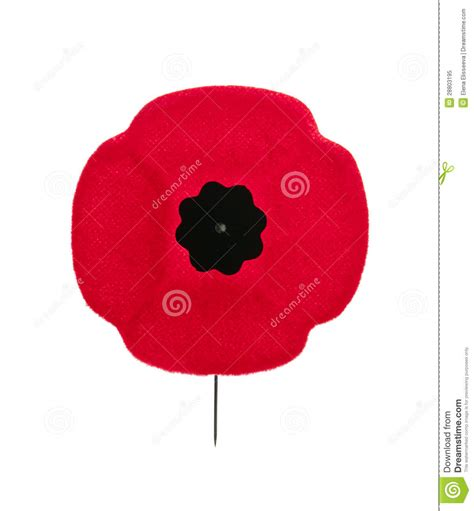 remembrance day poppy royalty free stock photo image 28803195