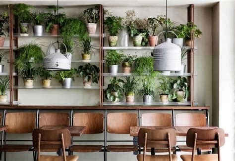 vasi arredo interni 17 migliori idee su ristorante interni su