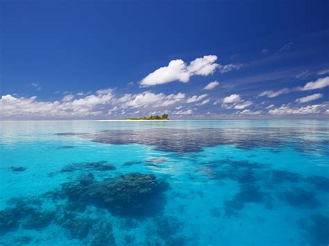 ocean s oceans images blue paradise hd wallpaper and background