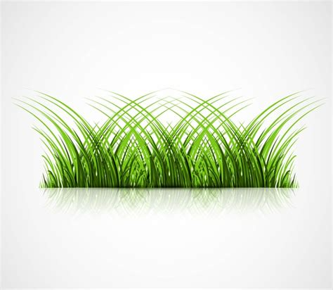 adobe illustrator grass pattern abstract green grass with reflection vector illustration