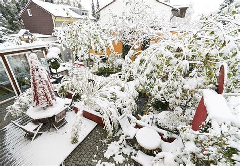pflanzen winterfest einpacken garten winterfest machen obi ratgeber