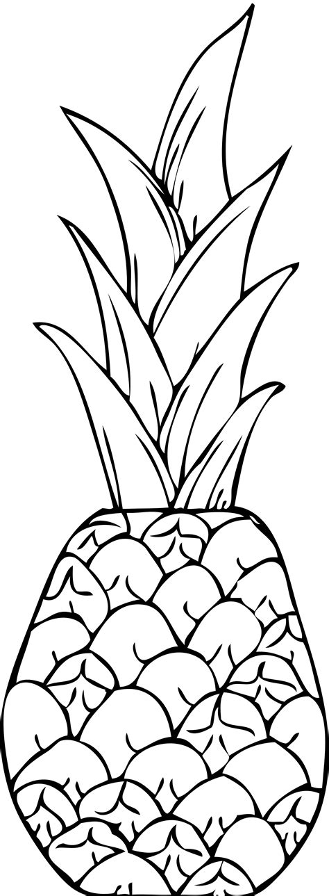 pineapple coloring pages free printable pineapple coloring pages for kids