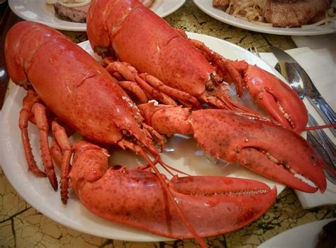 casino with lobster buffet fisherman s wharf themed buffet all day on new year s what a way to begin 2015 yelp