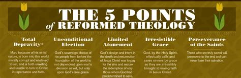 reformation theology a systematic what is the reformed faith