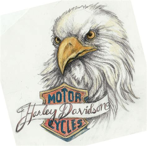 harley davidson eagle tattoo designs harley eagle by kittencaboodles on deviantart