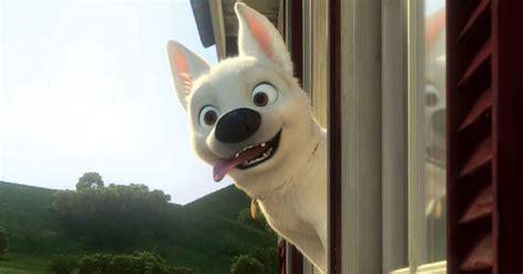 quiz  disney dog   adopt bolt disney