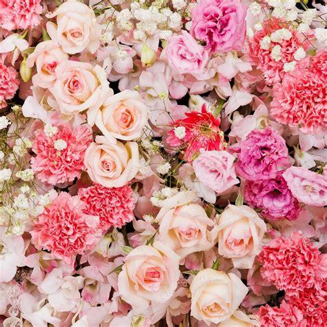 mooie bloemen afbeeldingen mooie bloemen achtergrond stockfoto 169 subinpumsom 66208961