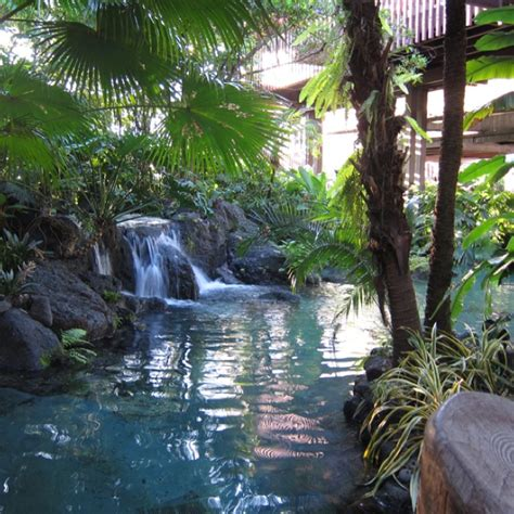 17 best images about polynesian 17 best images about disney s polynesian resort on