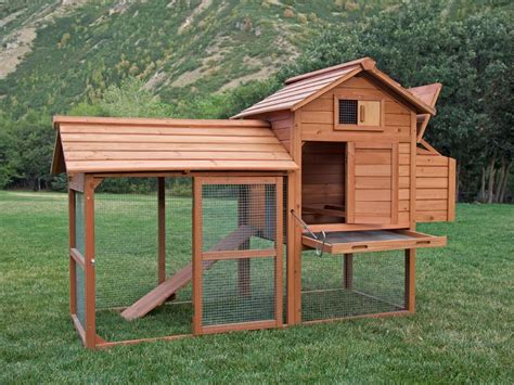 Backyard Chickens Coops by Backyard Chicken Coop Pictures