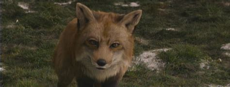 Fox wikinarnia the chronicles of narnia c s lewis