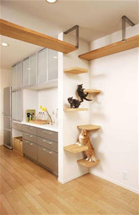 cat friendly home design pangkahbulat blog beli rumah untuk kucing