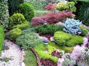 colorful design for a small garden conifer design