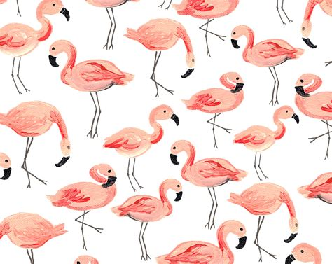 flamingo wallpaper pattern flamingo party seamless pattern patterns creative market