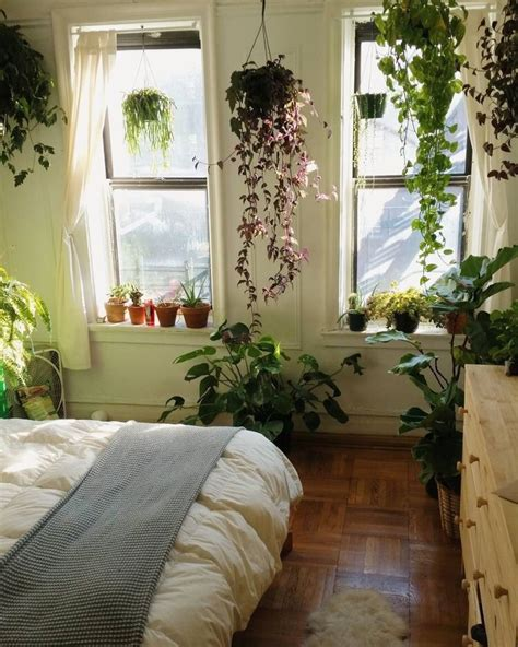 apartment plants ideas life is hectic like like like like home pinterest bedrooms plants and apartments